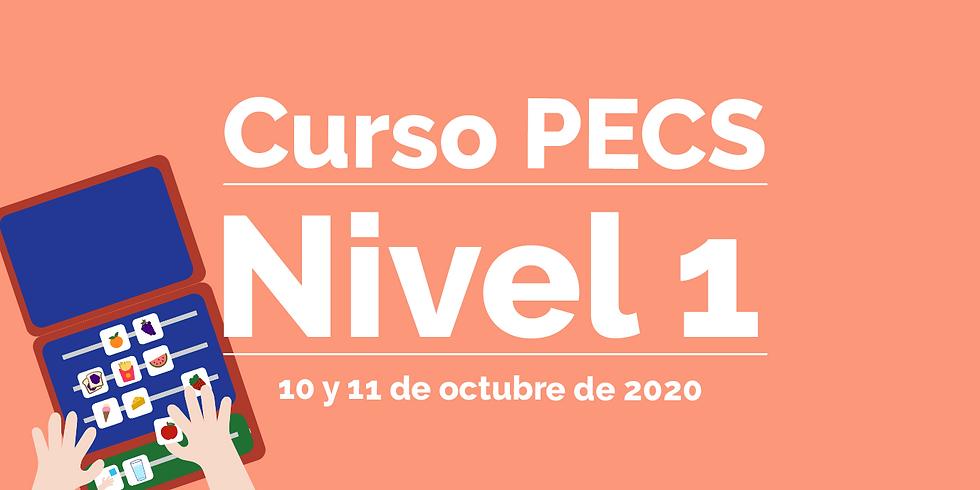 PECS 1 - Grupo 2 - OCT 2020