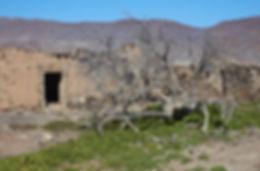 goma_atalayita-pozo negro23.jpg