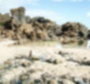 BEACH - PUNTA GORDA.jpg