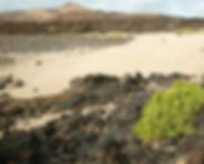 BEACH - PUNTA CHICA.jpg