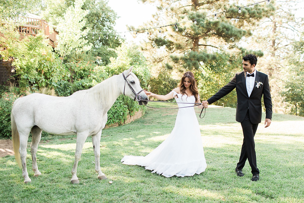 Bride and Groom take white horse for a walk.