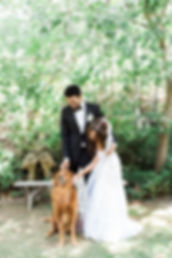 Bride, Groom, and ring bearer dog