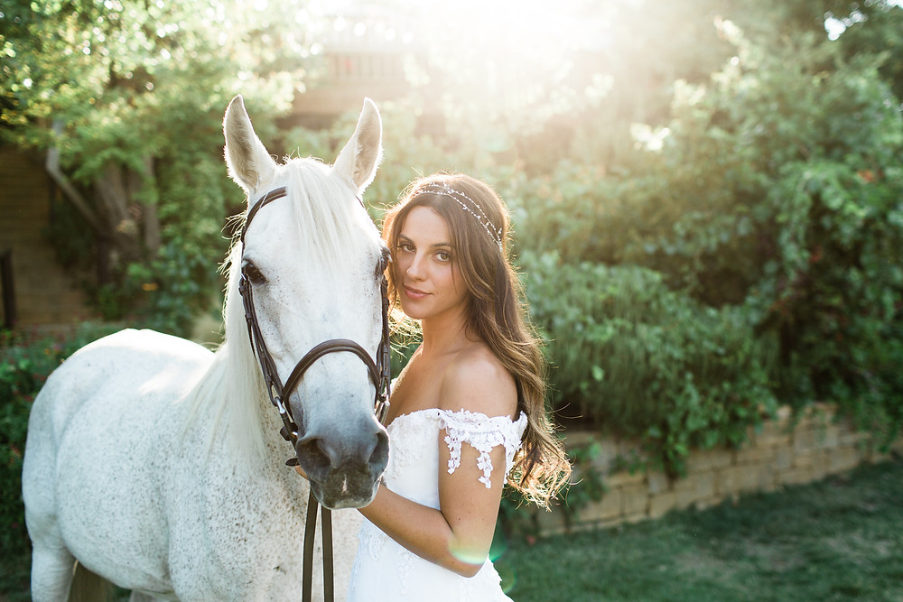 Bride poses with white horse in sun drenched trees.