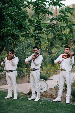 Mariachi band playing at wedding in Mexico