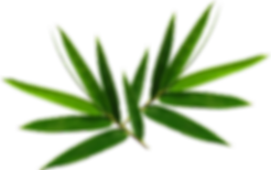 double-leaf.png