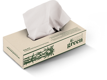 Rectangle-Tissues.png