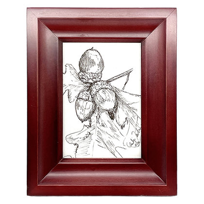 Triple Acorn Drawing