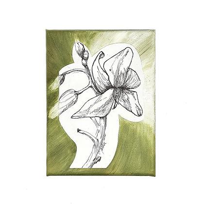 Orchid Blossom ArtworkbyCarolineTacker & Kymrie Designs