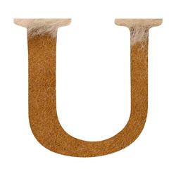U---UGG