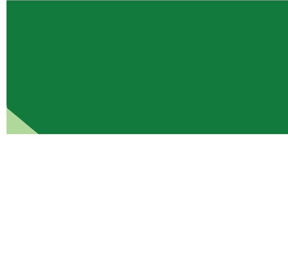 spinach warped
