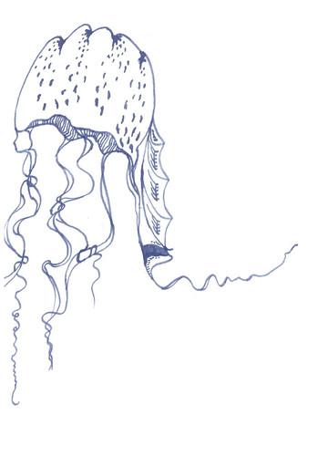 jellyfish blue_edited.jpg