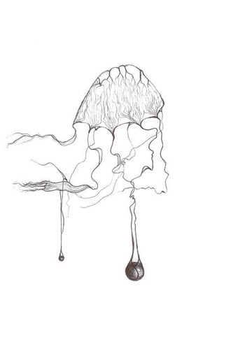 jellyfish - from squarespace.jpg