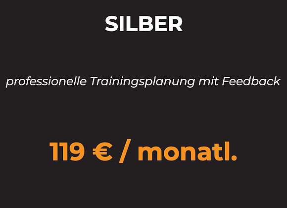 REMOTE COACHING SILBER
