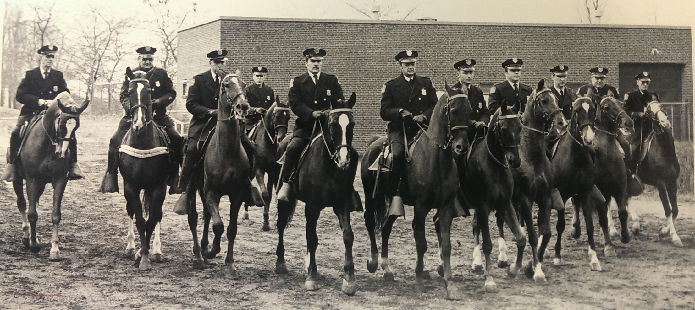 Mounted Unit 1975