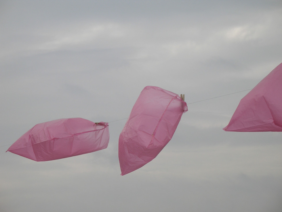 Pink bags in nature