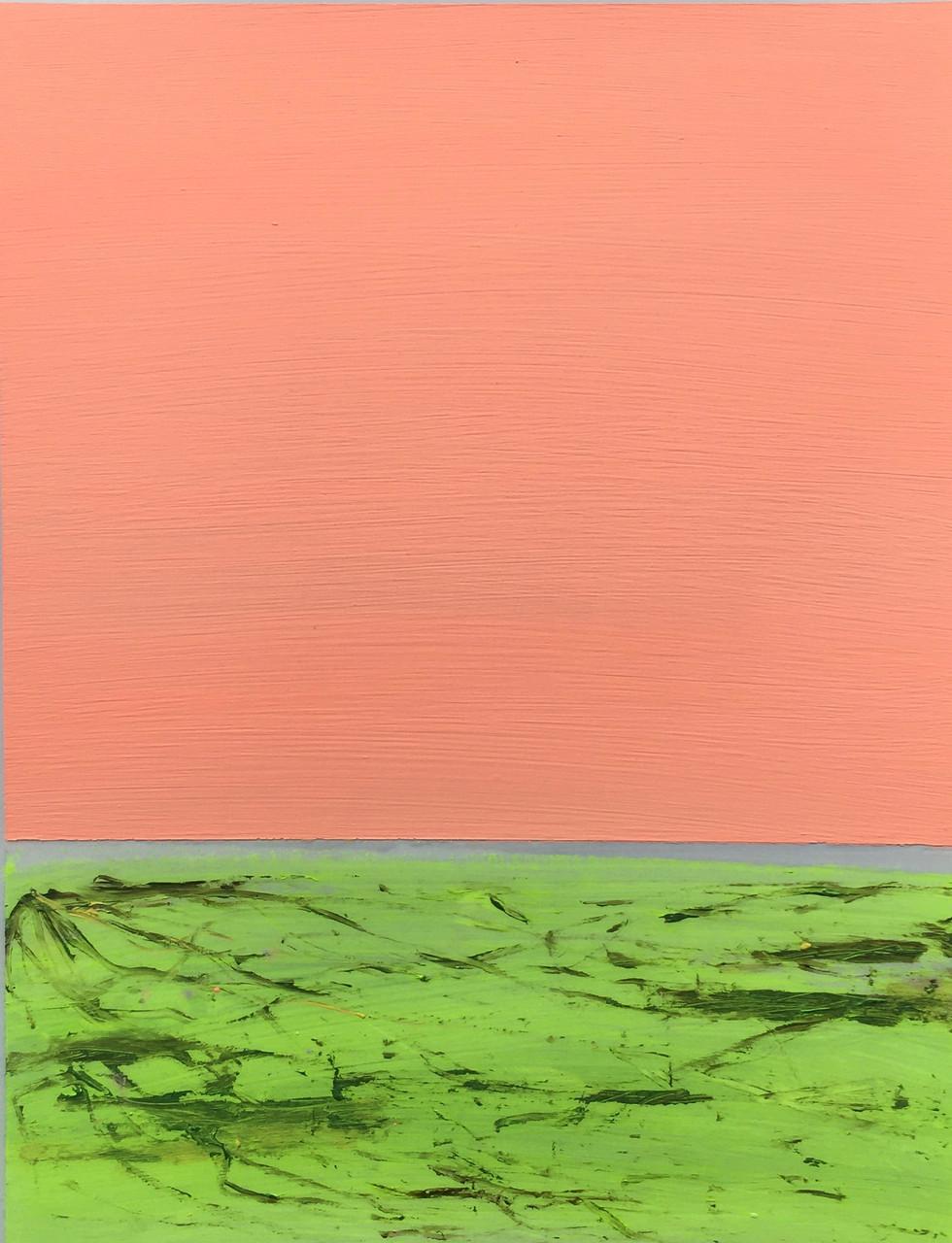 Landscape 48
