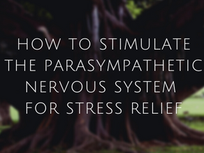 How to Stimulate the Parasympathetic Nervous System
