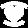 CA Strong Logo_NoStars_White.png