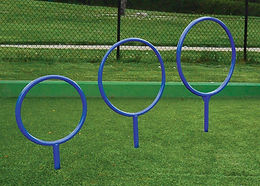 Dog Hoops