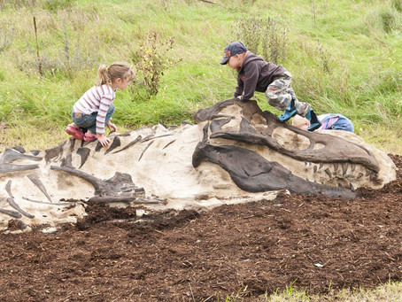 Stimulate Your Child's Inner Paleontologist with Our Dino Digs and Dino Climbers