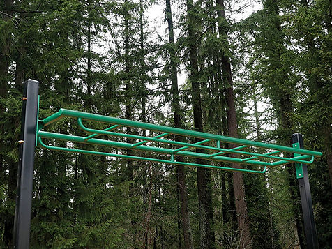 StayFIT  Overhead Ladder with Rails