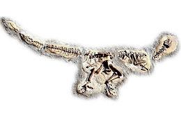 Allosaurus Playground Dinosaur Dig