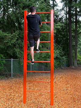 StayFIT Vertical Ladder