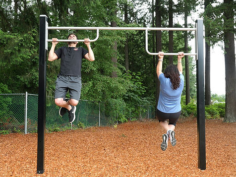 StayFIT Triple Pull Up