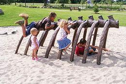Dinosaur Rib Playground Climber