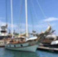 Mayflower in water.jpg