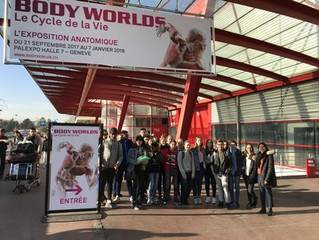 Body World, l'exposition
