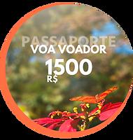 Passaporte Voa Voador Creditos para sua viagem (5).png