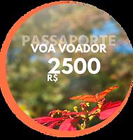 Passaporte Voa Voador Creditos para sua viagem (3).png