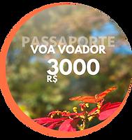 Passaporte Voa Voador Creditos para sua viagem (2).png