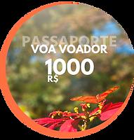 Passaporte Voa Voador Creditos para sua viagem (1).png