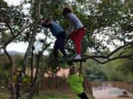 Asas da Floresta (7).jpeg