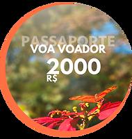 Passaporte Voa Voador Creditos para sua viagem (4).png