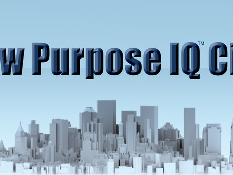 Low Purpose IQ™ City