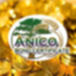 Anico Bond Cert4 256X256.png