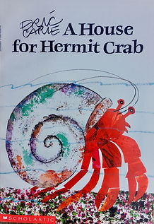 HOUSE FOR HERMIT CRAB IMG_1165.jpeg