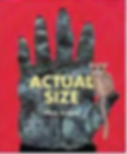 Actual Size.png