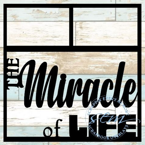 The Miracle Of Life Scrapbook Overlay