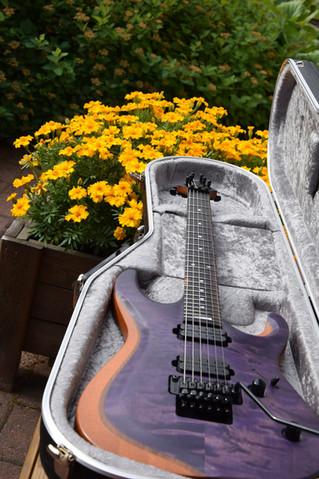 V25-FR ECM Berry guitar in case