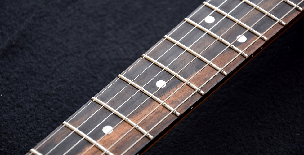 Exotic ebony fretboard with standard dot inlays