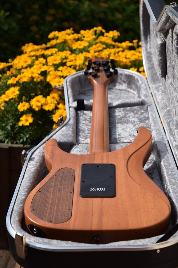 V25-FR Berry guitar back