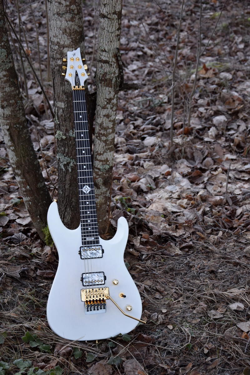 V25-FR plus2 27 inch scale baritone guitar with TAISTO custom pickup covers