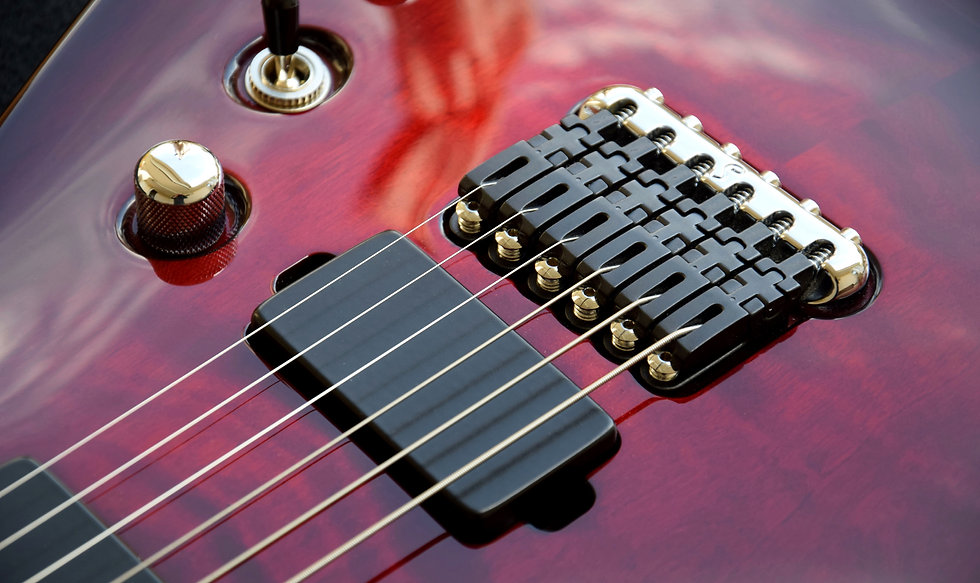 Taisto Guitars V25-FX/H with Hannes bridge and Bare Knuckle Pickups
