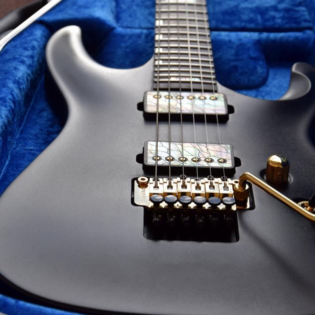 V25-FR plus2 guitar in case