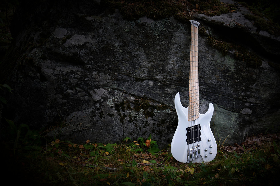 Taisto Guitars - iZEN-5MS Headless Bass