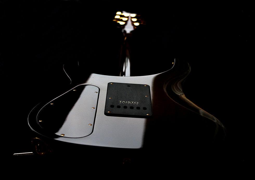 Taisto Guitars V25-VT backside with tremolo cover and brand logo